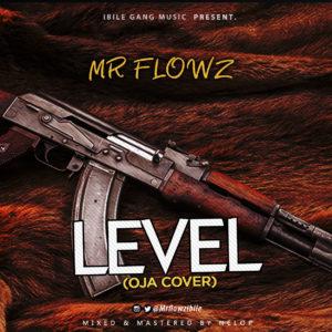 Mr Flowz Level Reminisce Oja Cover.mp3