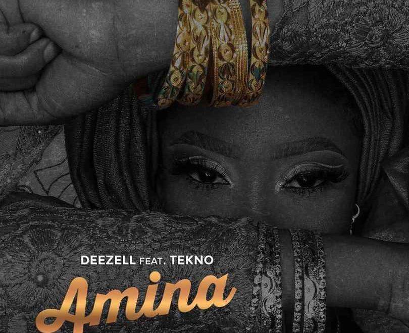 Download Deezell Amina Ft Tekno Audio