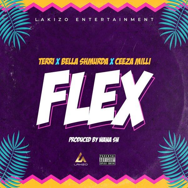 Download Terri – Flex X Bella Shmurda X Ceeza Milli.Mp3