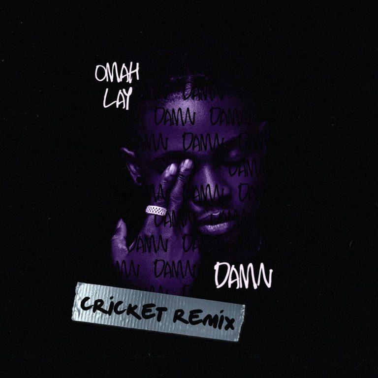 Omah Lay – Damn (Cricket Remix) Free Mp3 Download