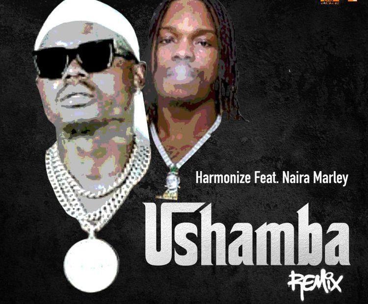 Harmonize – Ushamba (Remix) Ft Naira Marley Free Mp3 Download