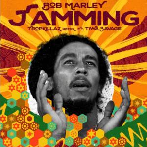 Bob Marley – Tamming Remix Ft Tiwa Savage Free Mp3 Download