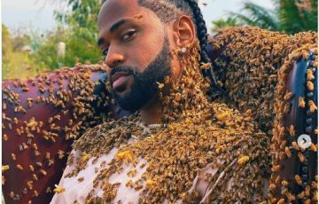 Big Sean Stirs Reactions After Sharing Photos Of Himself Covered In 65,000 Bees